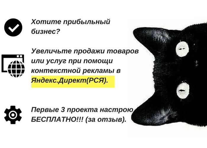 Настрою Рекламную Кампанию в Яндекс.ДиректРСЯ для Вашего бизнеса