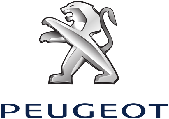 Замена цепи ГРМ  на двигателях EP6 Peugeot, Mini и Citroen